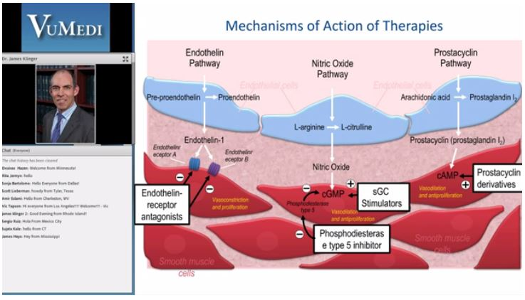 """Drug Therapies for PAH"" by Dr. James Klinger, Rhode Island Hospital, Providence, RI."